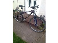 BIKE FOR SALE , A RETRO TREK 6500 ZX !