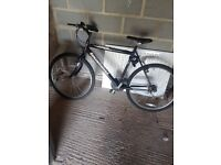 Mens townsend bike for sale