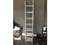 Brand new set ladders