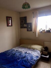 Room to rent in Exeter, Mount Pleasant. Professional houseshare in great location