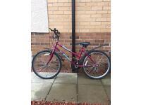 Older Girl/Ladies Bike