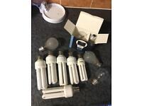 11 light bulbs (will take best offer)