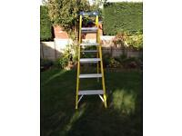 Wickes 6 step fibre glass steps.