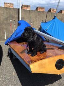 Fireball sailing dinghy