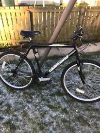 Townsend dakkar bike