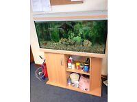 180 Litre Aquarium