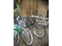 5 push bikes for sale all need tidying £60 the lot ideal car boot