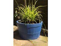 Half barrel with plants or drinks cooler barrel