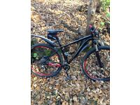Specialized crave comp 29er may p-ex for TT road bike