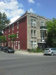 Large 7 1/2 (3 - 4 BR, 1 1/2 bath) Dowtown - in the Plateau