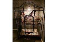 Extra large parrot/monkey/bird cage
