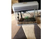 28l fish tank Aqua ar 126 full set up with filter heater light gravel ornament all work all in pic
