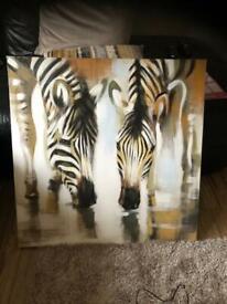 Zebra canvas picture