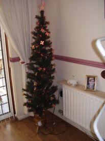 Chrismas tree,