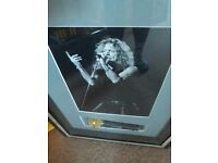 SIGNED ROBERT PLANT MICROPHONE framed with print