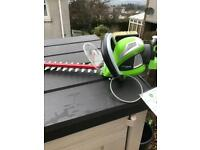 Greenworks Hedge Trimmer and Blower.