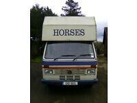 Volkswagen horse box