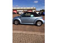 Beautiful Blue Beetle Convertible REDUCED FOR QUICK SALE!