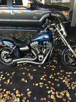 2013 FXDWG