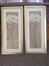2x white poppy framed prints