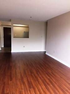 Lake Street 2 Bedroom Apartment For Rent
