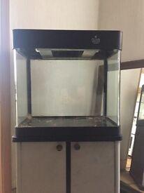 100 litre Cleair Aquatics tank plus full set up.
