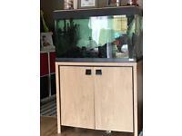 Fish tank 125lt
