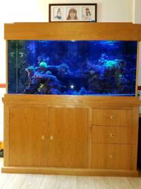 Fish tank and oak unit 5ft
