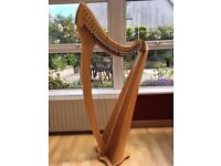 36 String Salvi Lever Harp! In very good condition!