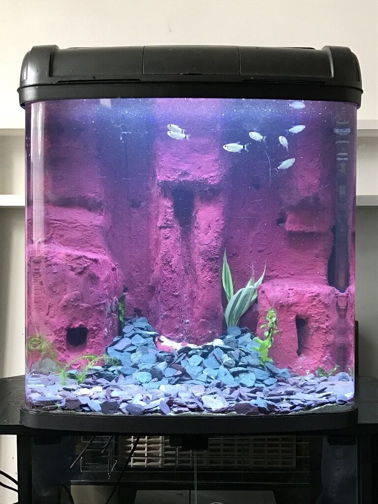 Pink fish tank aquarium with filter - 100 Litre Custom Fish Tank Aquarium With Sandfall