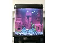 100 litre custom fish tank aquarium with sandfall