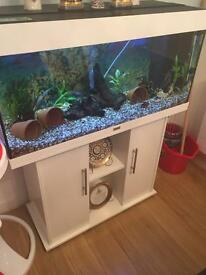 Juwel Rio180 fishtank with stand