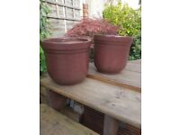 Two Brown Medium Sized Plant Pots