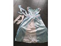 Cinderella fancy dress costume