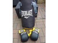 Everlast Junior 2ft Boxing Punch Bag and Junior Gloves.