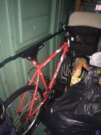 Adult Apollo Slant Bike
