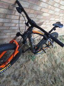 Carrera Vendetta mountain bike