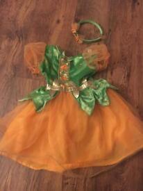 Girls fancy dress costume