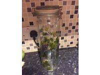 Tall glass storage jar