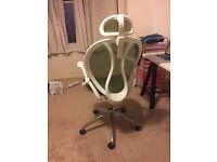 LANGRIA Ergonomic High-Back Mesh Executive Office Chair (green)