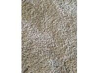 Brand new carpet off cut