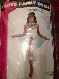 Girls Egyptian Queen dress large