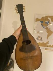 Antique mandolin
