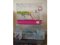 Two Hamster Cages and Accessories