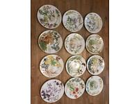 Caverswall Plates - Diary of an Edwardian Lady (FULL SET of 12)