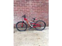 Boys red mountain bike