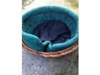 DOG BASKET in Wicker with Cushioned Interior