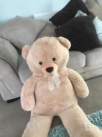 Large cuddly teddy