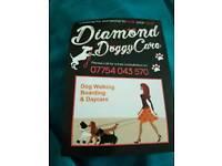 Diamond Doggy Care - Dog Walking Servies
