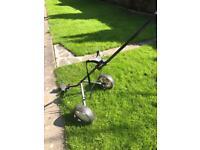 Golf trolley / cart